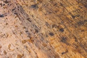 Hardwood Floor Drying Seattle Restore Wet Hardwood Drying Water - Hardwood floor repair seattle